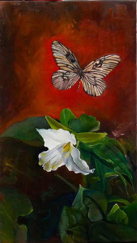 trillium and butterfly - nfs