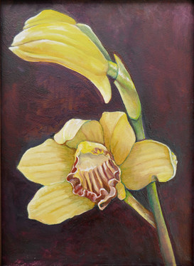 yellow-red orchid
