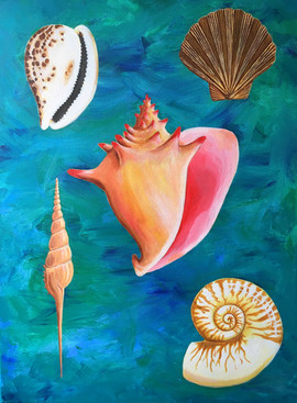 shells of virtue