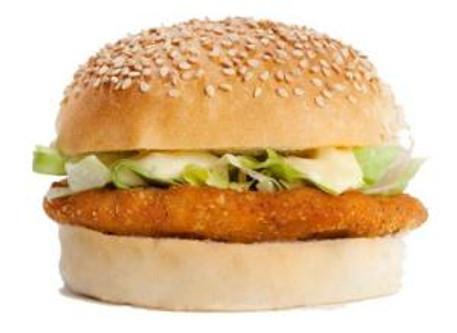 Photo of a FEBO kipburger