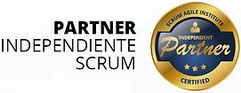 Logo_partner_SAI.png