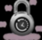 snapshot-lock.png