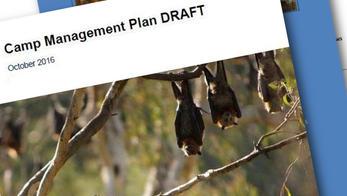 Management Plans