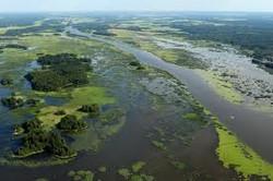 Pihlavanlahden delta eli suistoalue.jpg