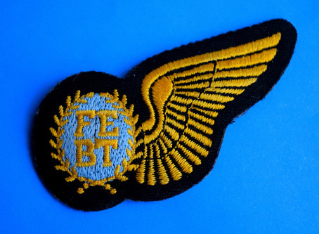 Know Anyone Who Earned This Wing?