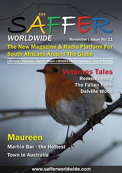 SAFFER 11 Cover.jpg