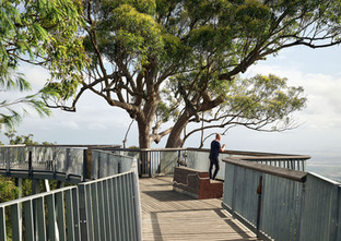 Boardwalk, Mt Archer