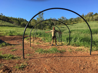Organic Farm shade house underway!