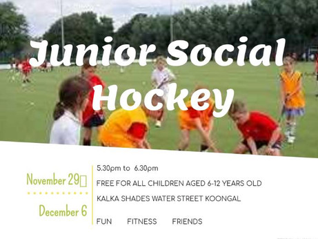 Junior and Senior Social Hockey