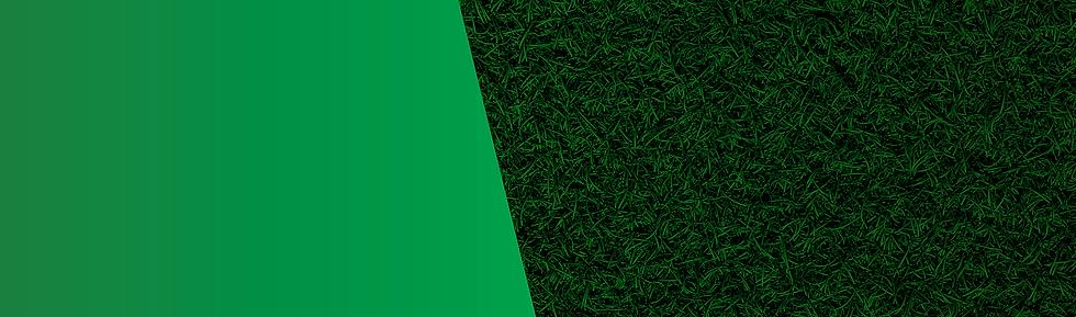 Grass Bg.png