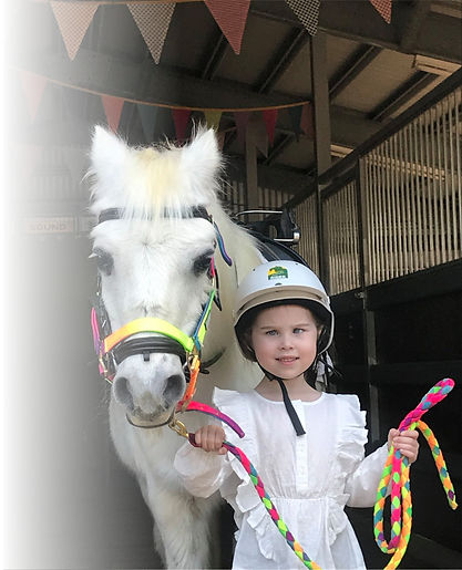 Pony Party Kids Party Ideas Queensland