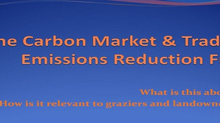 The Carbon Market & Trading