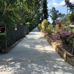 Botanical Gardens - Rockhampton