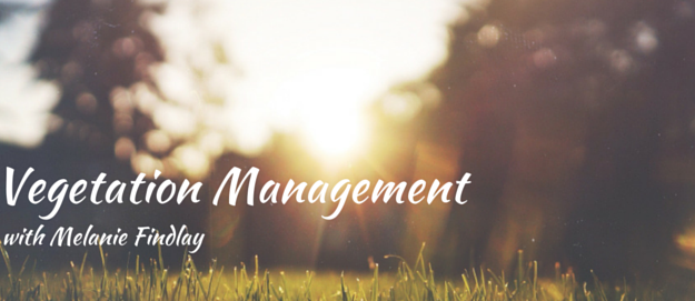 Vegetation Management with Melanie Findlay