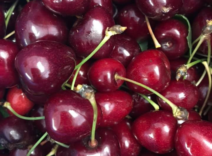 Cherry Season is here! Updated details on how to visit our farm during cherry season.