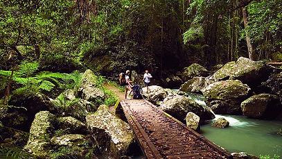 Kondalilla-falls.jpg