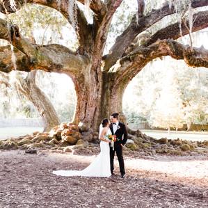 Romantic Tree of Life Wedding | New Orleans Elopement