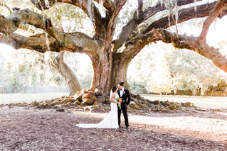 Romantic Tree of Life Wedding | New Orleans Elopement