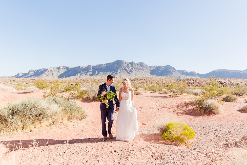 Nevada Destination Wedding