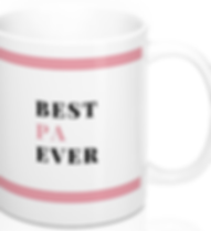 Best PA Cup Right.PNG