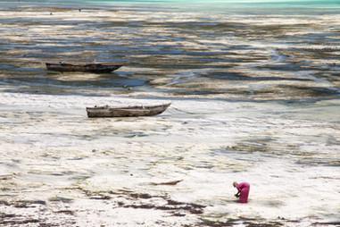 Destination: Zanzibar