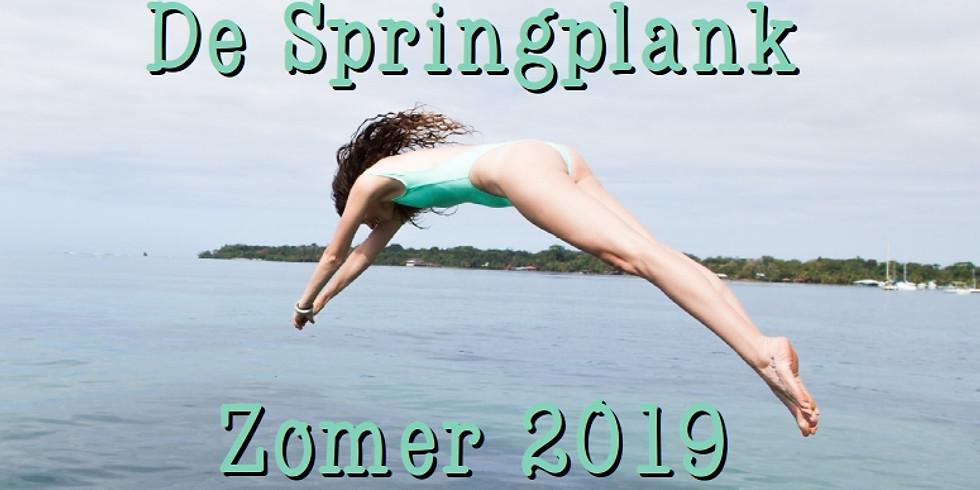 De Zomerse Springplank