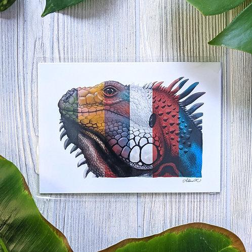 Multicolored Iguana Small 5x7 Print