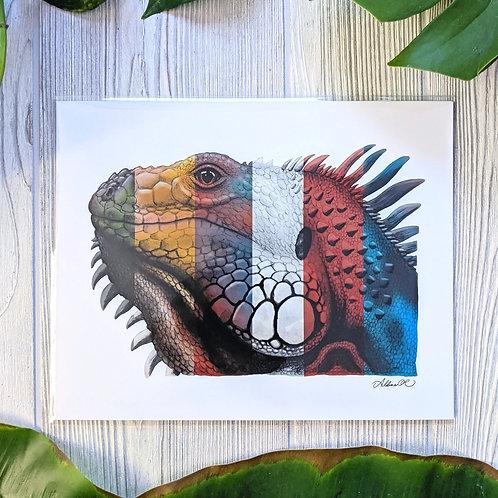Multicolored Iguana Medium 8x10 Print