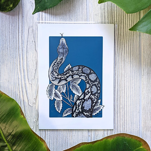 Reticulated Python Navy Small 5x7 Print