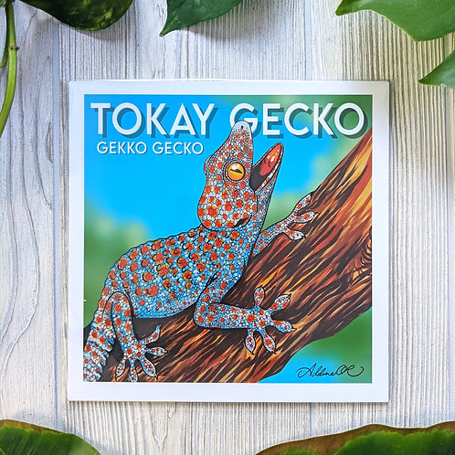Tokay Gecko 8x8 Medium Square Print
