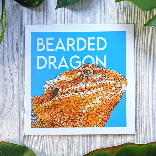 Bearded Dragon Medium 8x8 Square Print