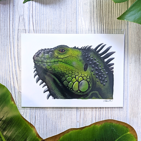 Green Iguana Small 5x7 Print