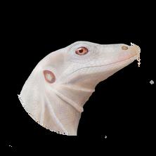 whitemonitor.png