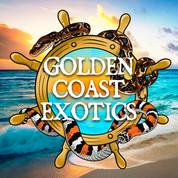 Golden Coast Exotics