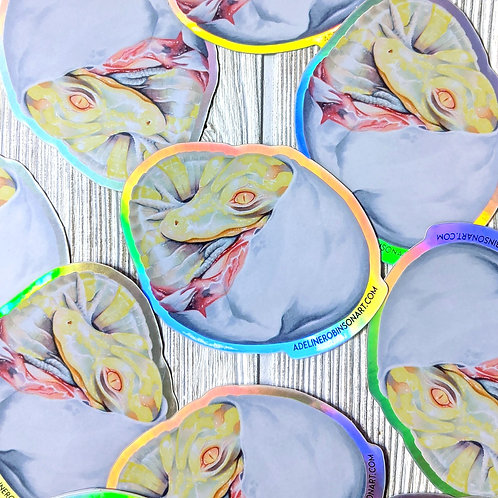 Albino Alligator Holographic Sticker