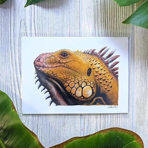 Yellow Iguana Small 5x7 Print