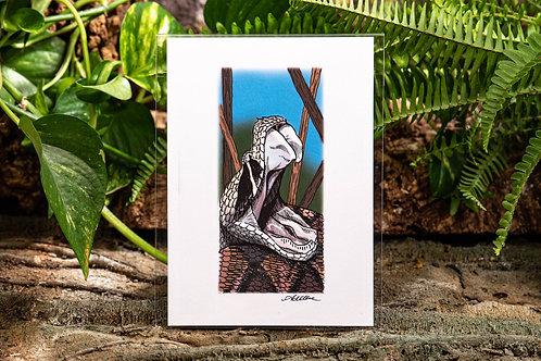 Gaboon Viper Small 5x7 Print