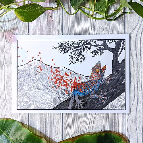 Tokay Petals Medium 8x12 Print