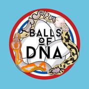 Balls of DNA