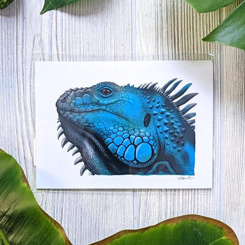 Blue Iguana Small 5x7 Print
