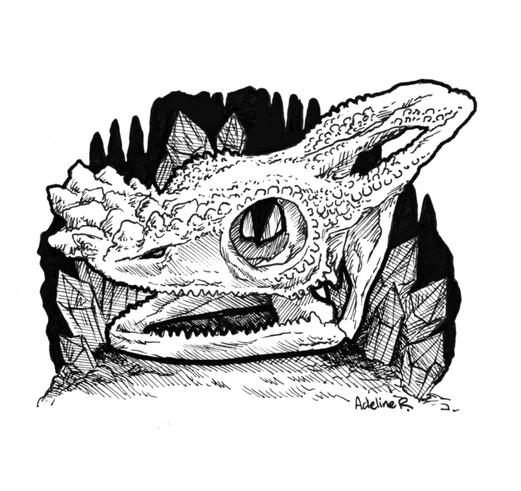Parson's Chameleon Skull