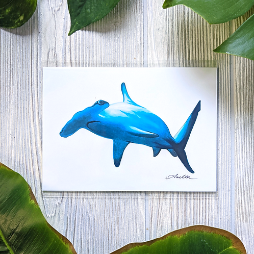 Hammerhead Shark Small 5x7 Print