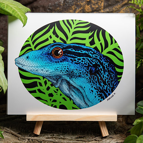 Varanus Macraei Color Medium 8x10 Metallic Print