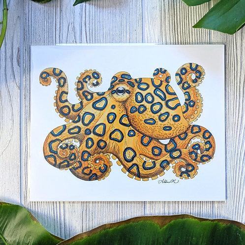 Blue Ringed Octopus Medium 8x10 Print