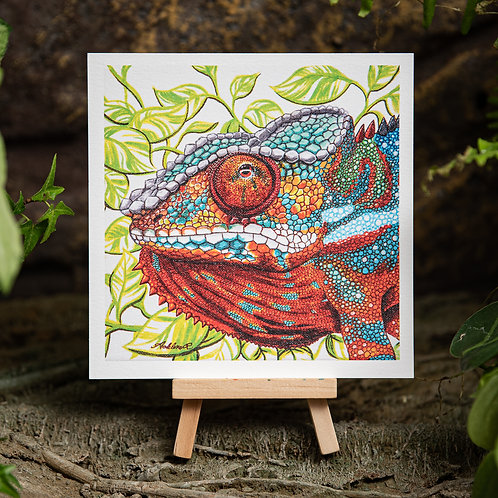 Panther Chameleon Small 5.5x5.5 Print