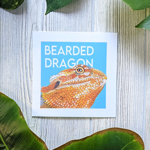 Bearded Dragon Small 5.5x5.5 Square Print