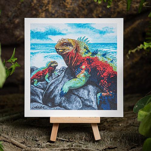 Galapagos Iguana Small 5.5x5.5 Print