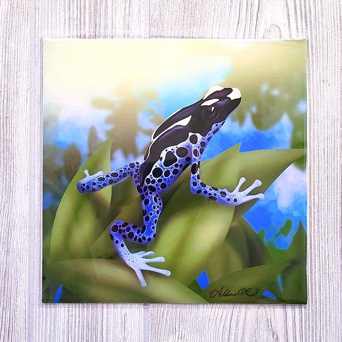 Dart Frog 8x8 Print