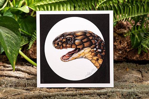 King Cobra Small Square 5.5x5.5 Print