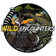 WILD_ENCOUNTERS.png